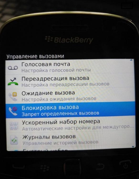 IMG8000456.jpg