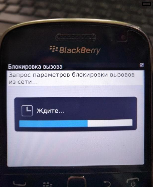 IMG8000457.jpg
