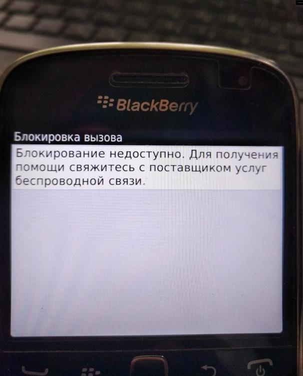 IMG8000458.jpg