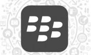 blackberry-development